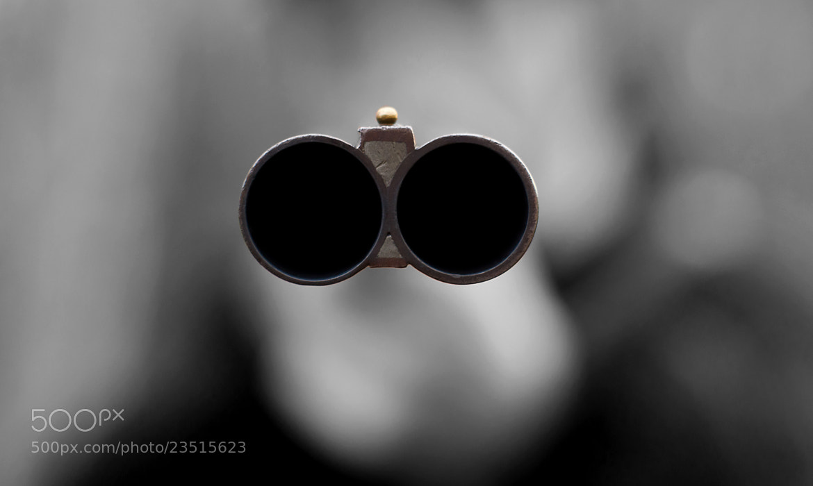 Photograph Both Barrels  by DAVID GAHAN on 500px