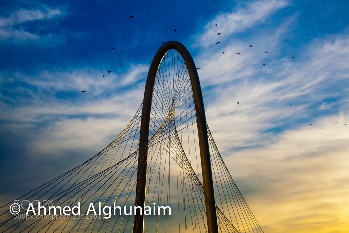 Photograph Trinity Bridge  by Ahmed Alghunaim on 500px