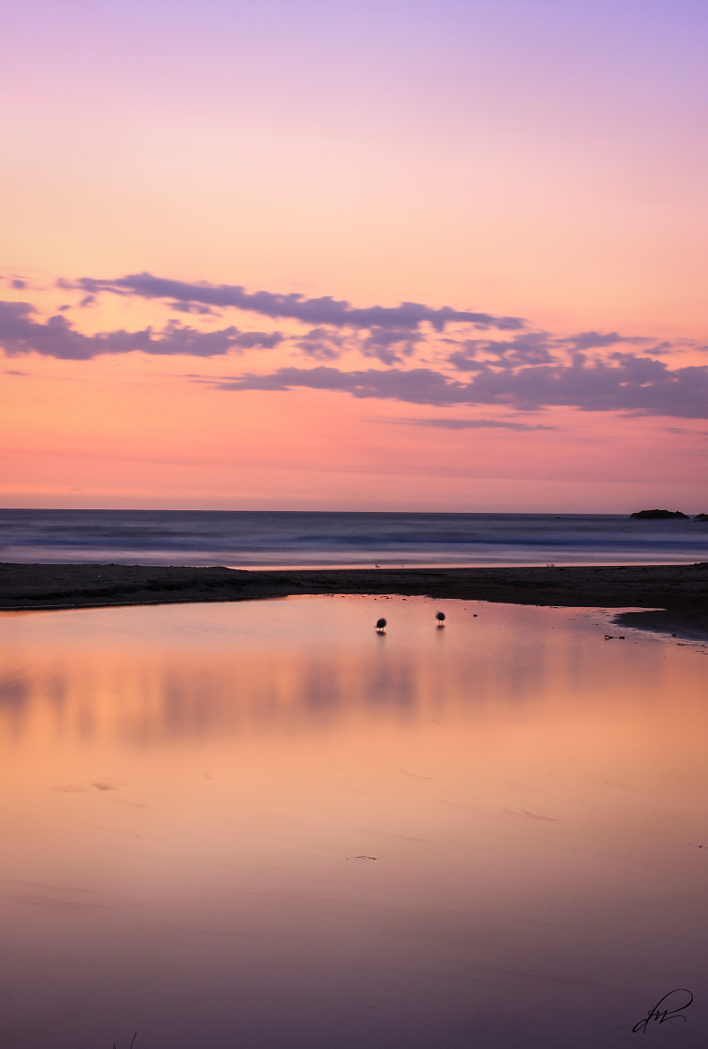 Photograph Mirror Reflection by Daisy May on 500px