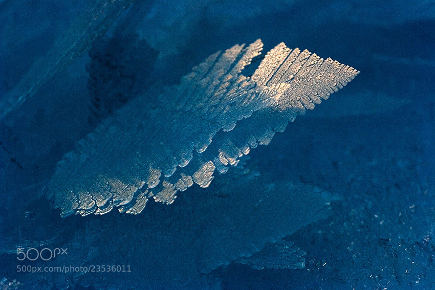 Photograph ice crystals by Philippe Lebeaux on 500px