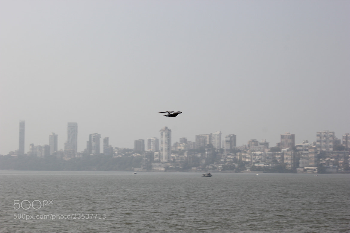Photograph Crusing the Skyline by avichum on 500px