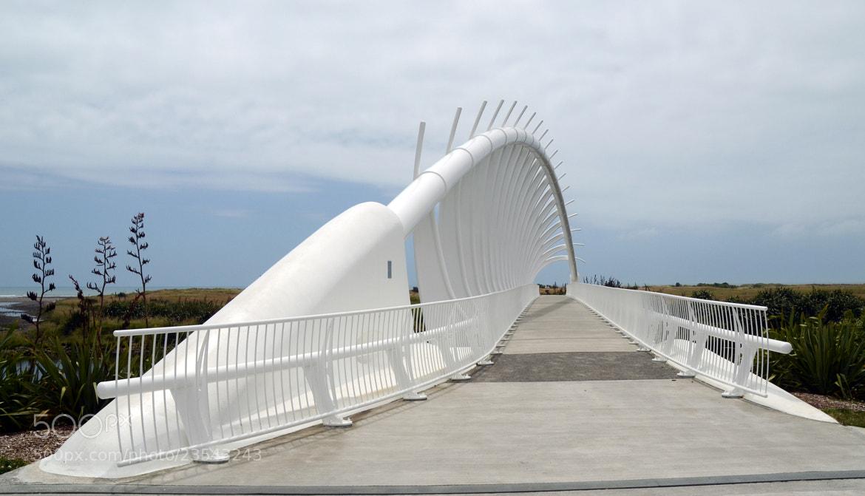 Photograph Te Rewa Rewa Bridge by Peter Field on 500px