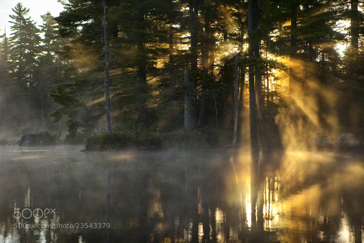 Photograph Light seeping by Maurice Pitre on 500px
