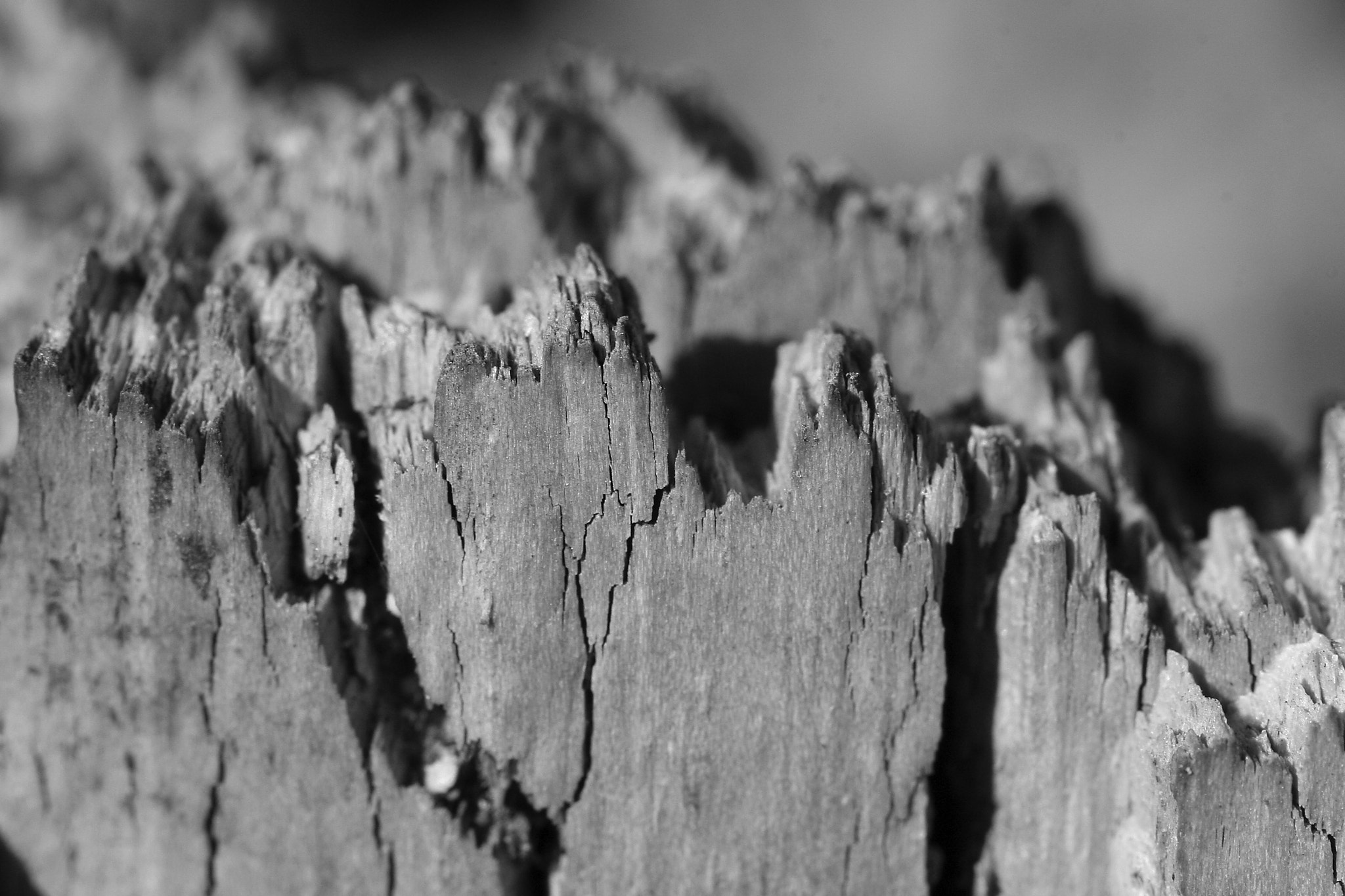 Photograph Wood mountains by Meelis Riisenberg on 500px