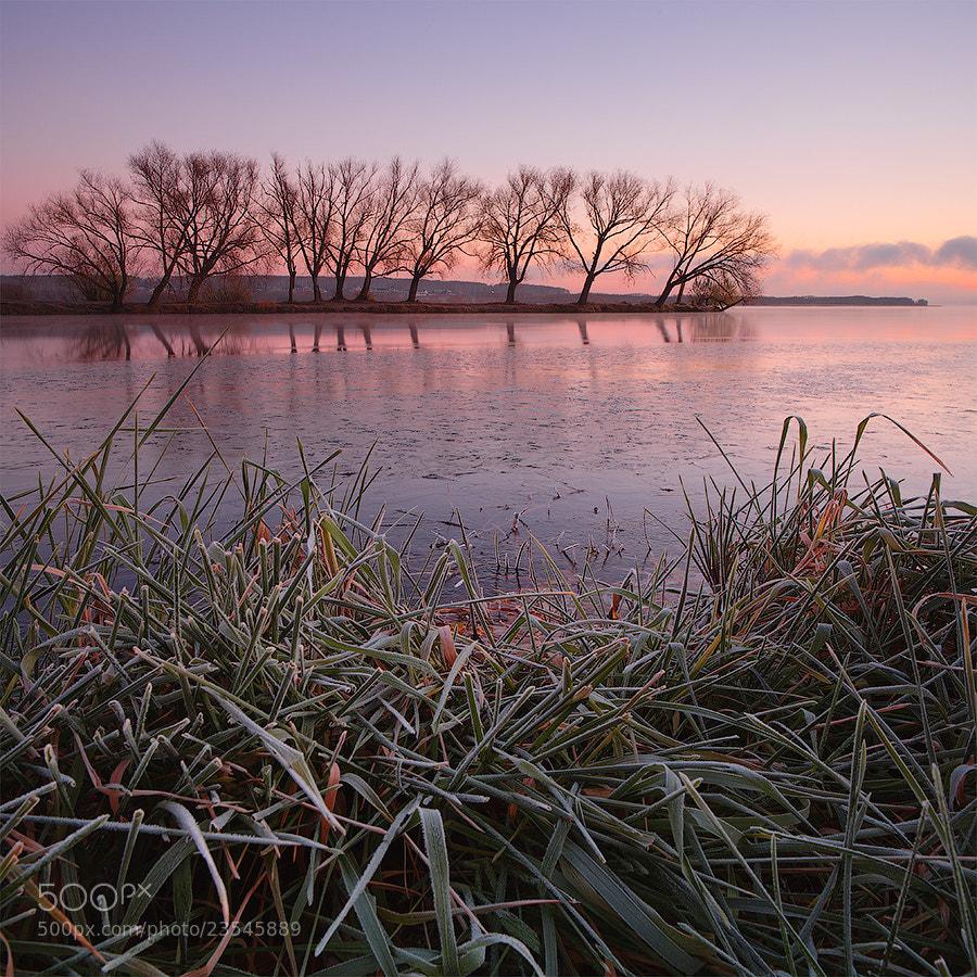 Photograph frosty freshness by Marat Akhmetvaleev on 500px