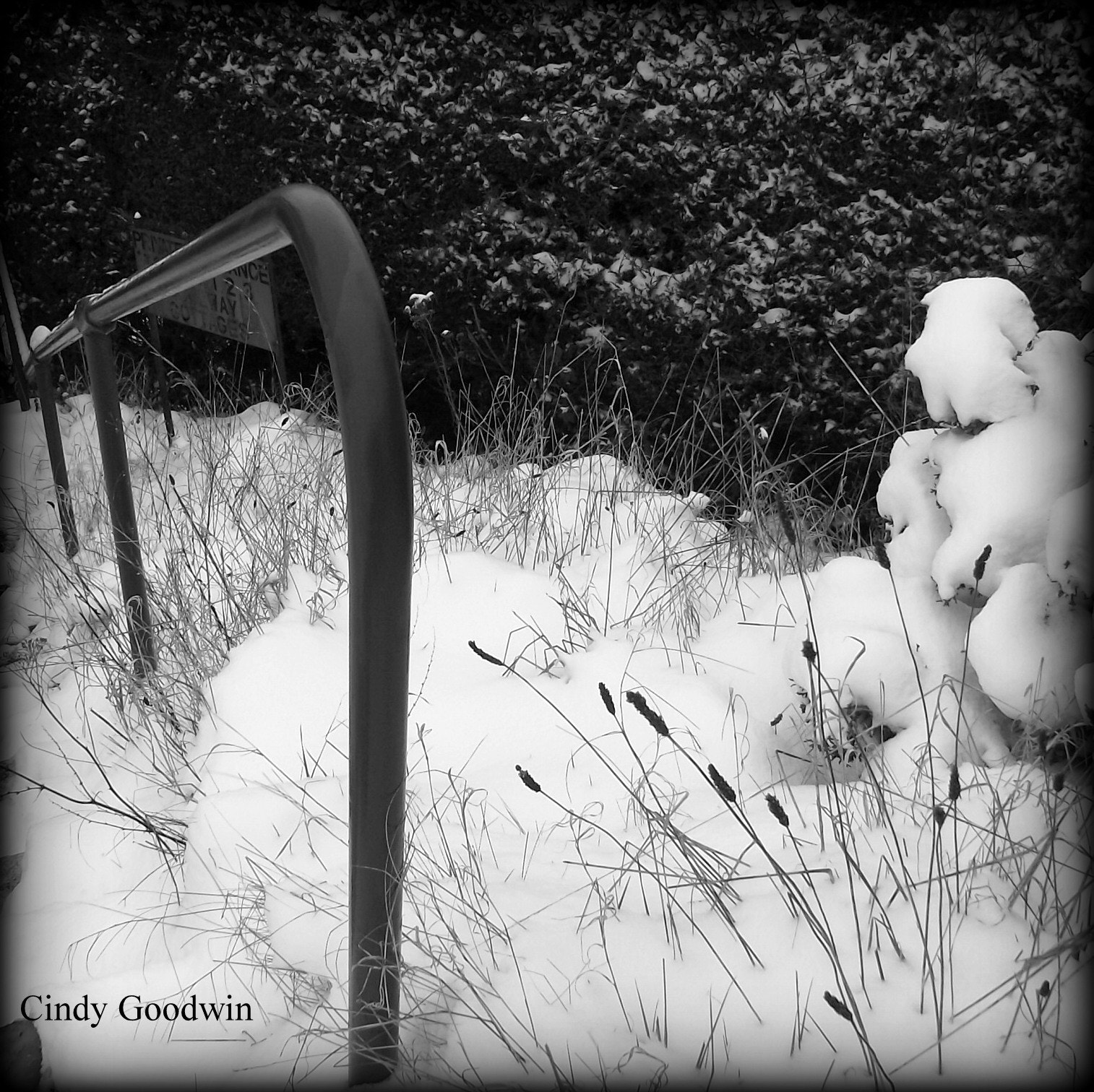 Photograph Snow Day by Cindy Goodwin on 500px