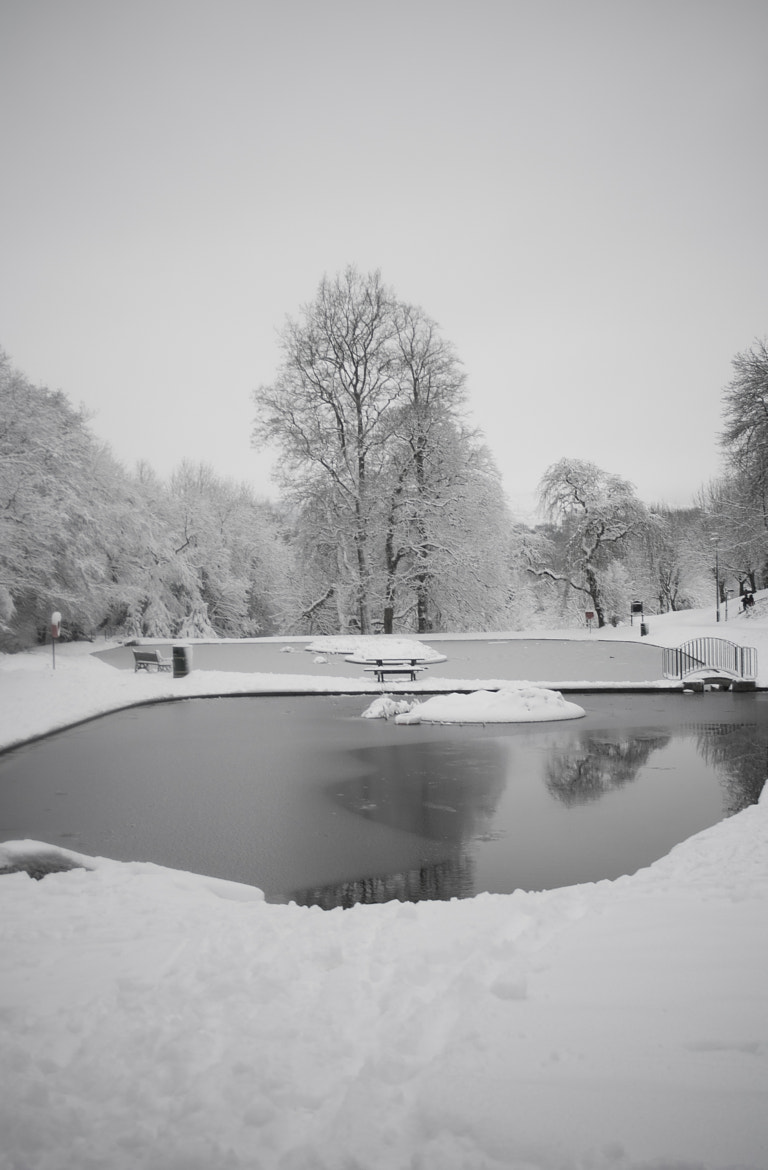 Photograph pontypool park in the snow II by Hywel Williams on 500px