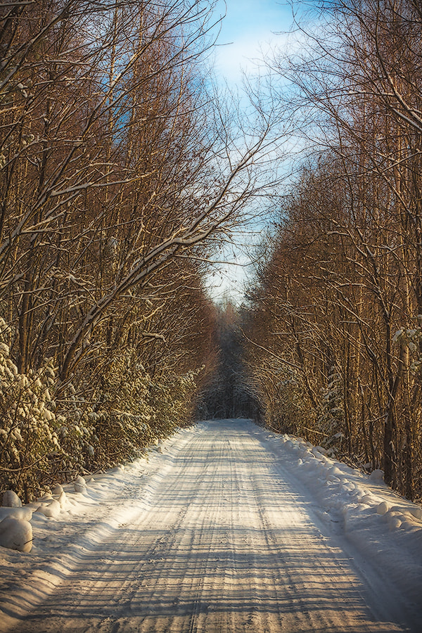 Photograph Winter road by Dmitry Kosokovsky on 500px