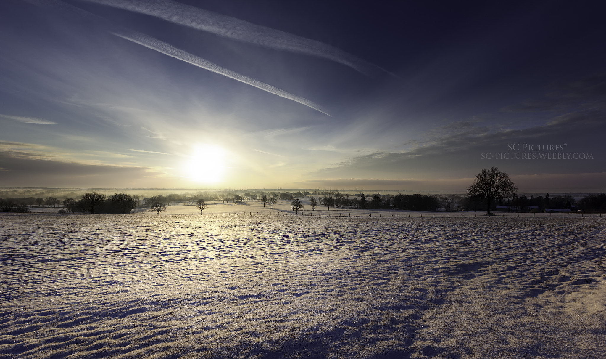 Photograph Cold Sun by SC Pictures* on 500px