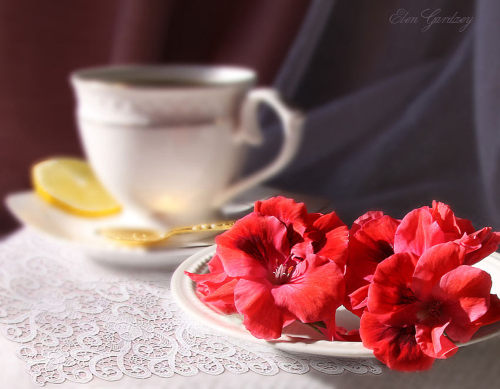 Photograph Morning Tea. by Elen Gardzey on 500px