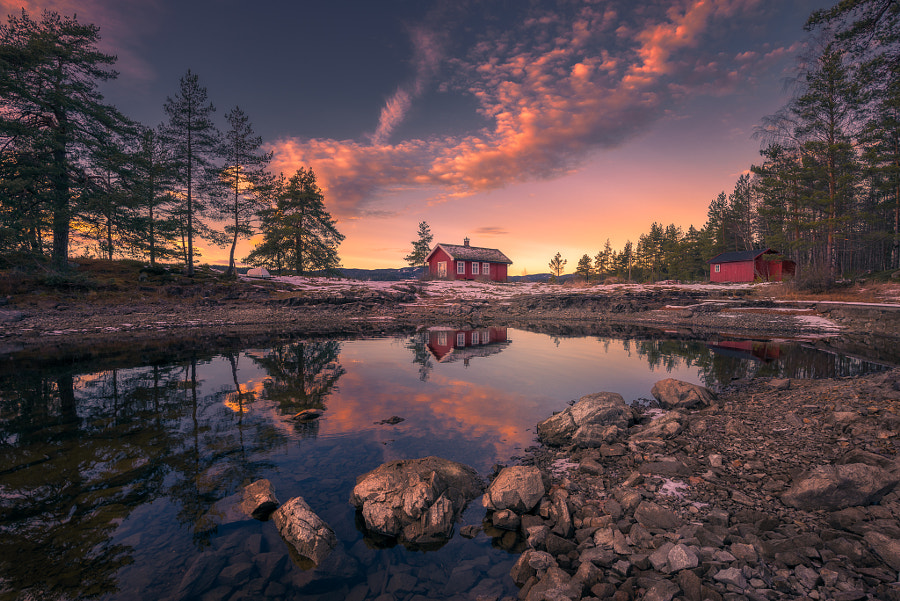The Request by Ole Henrik Skjelstad on 500px.com