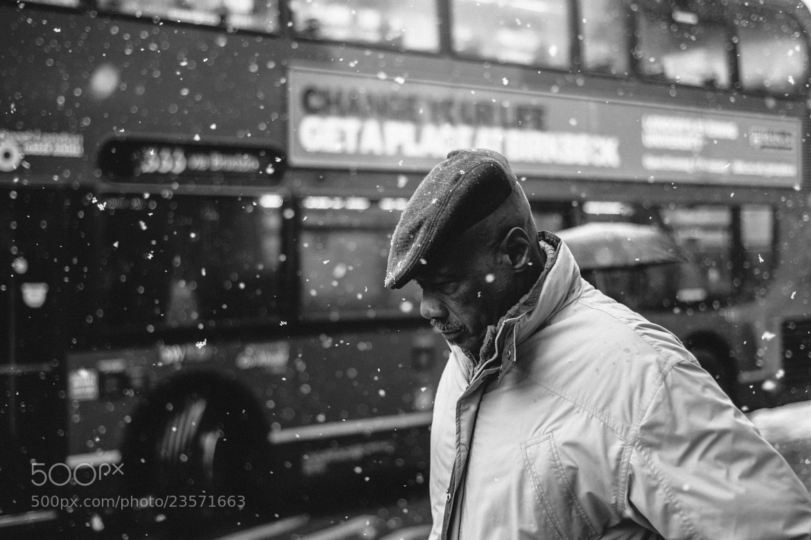Photograph Snowing Thoughts by Paul Bence on 500px