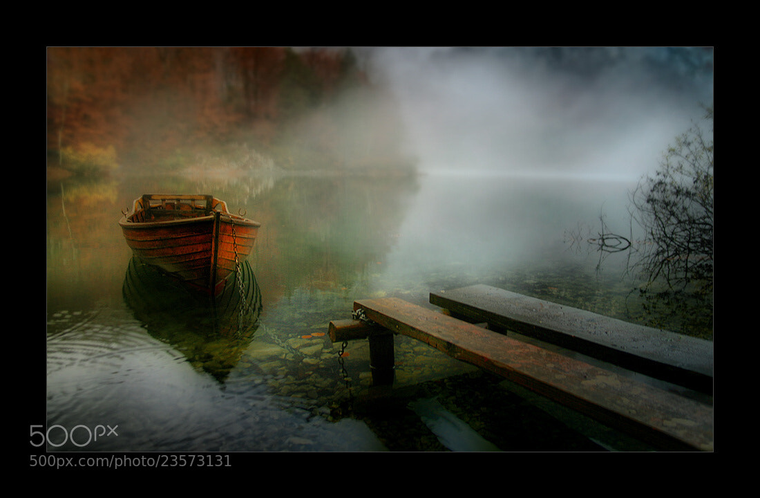Photograph fog by branepovalej on 500px