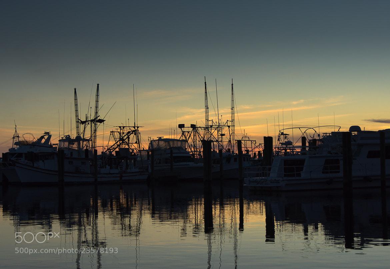 Photograph Gulf Coast Sunset by David Pope on 500px