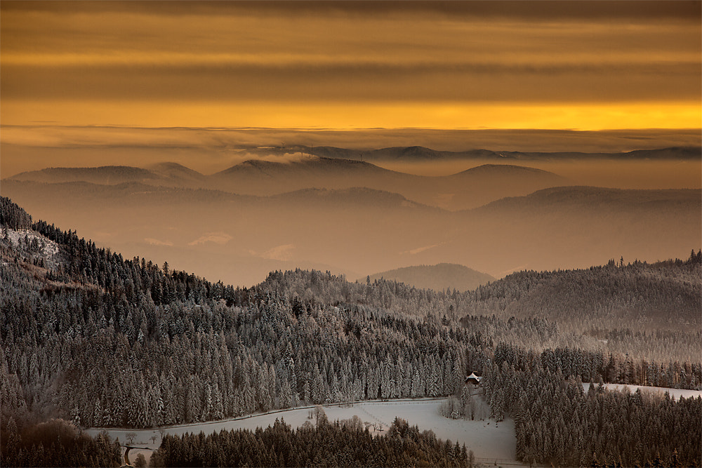 Photograph Black Forest 4:30 p.m. by Rainer Burkard on 500px