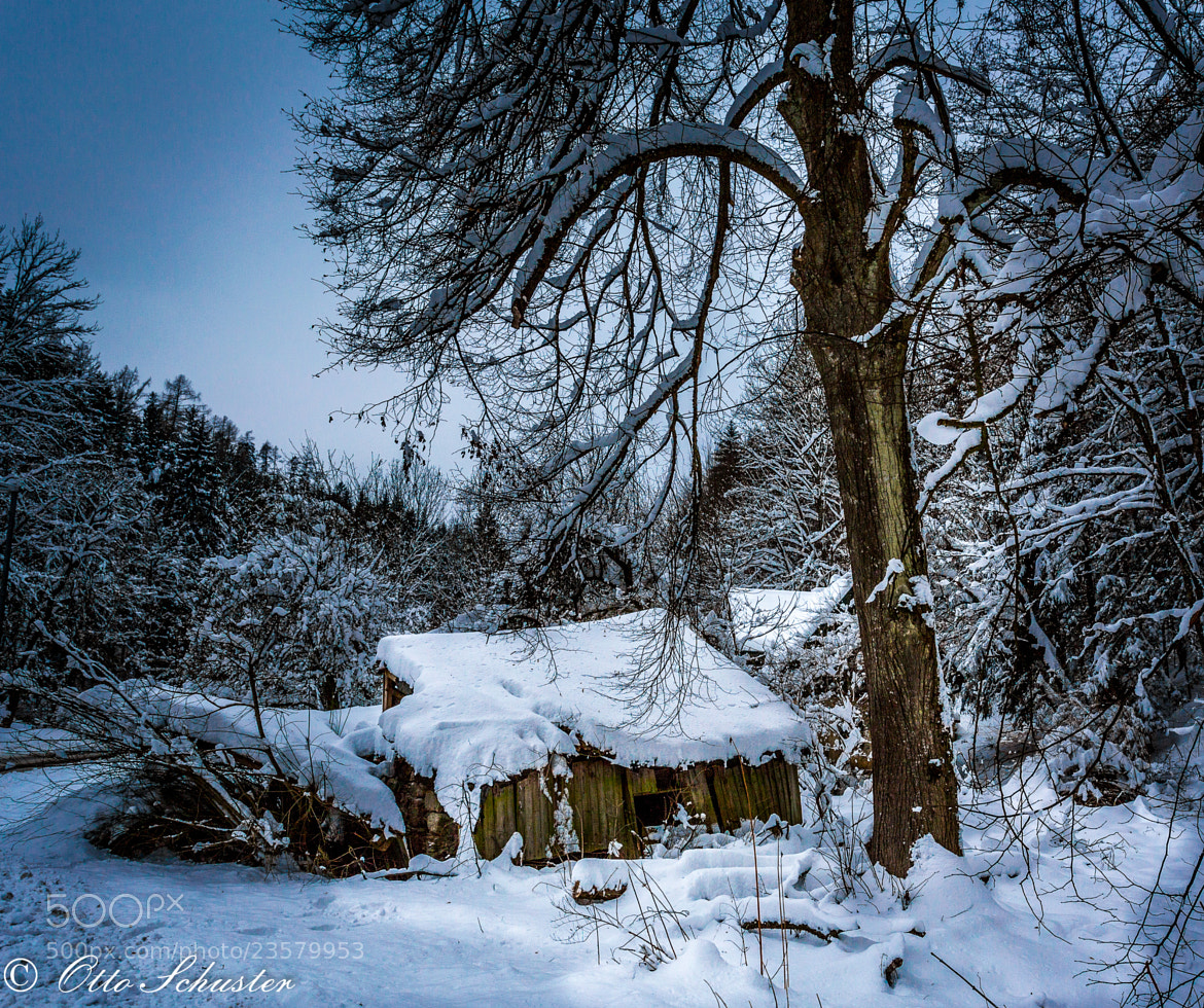 Photograph Austrian Winter 3 by Otto Schuster on 500px