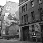 A mural of a bird on a wall in Manchester.