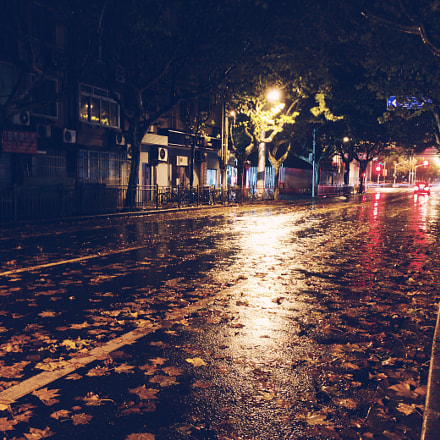 Autumn Raining Night