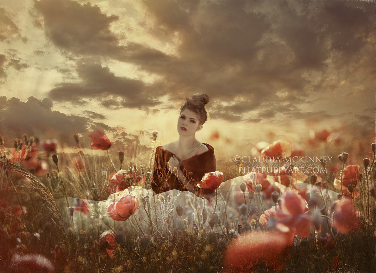 Photograph Girl in Field of Poppies by Phatpuppy Art on 500px