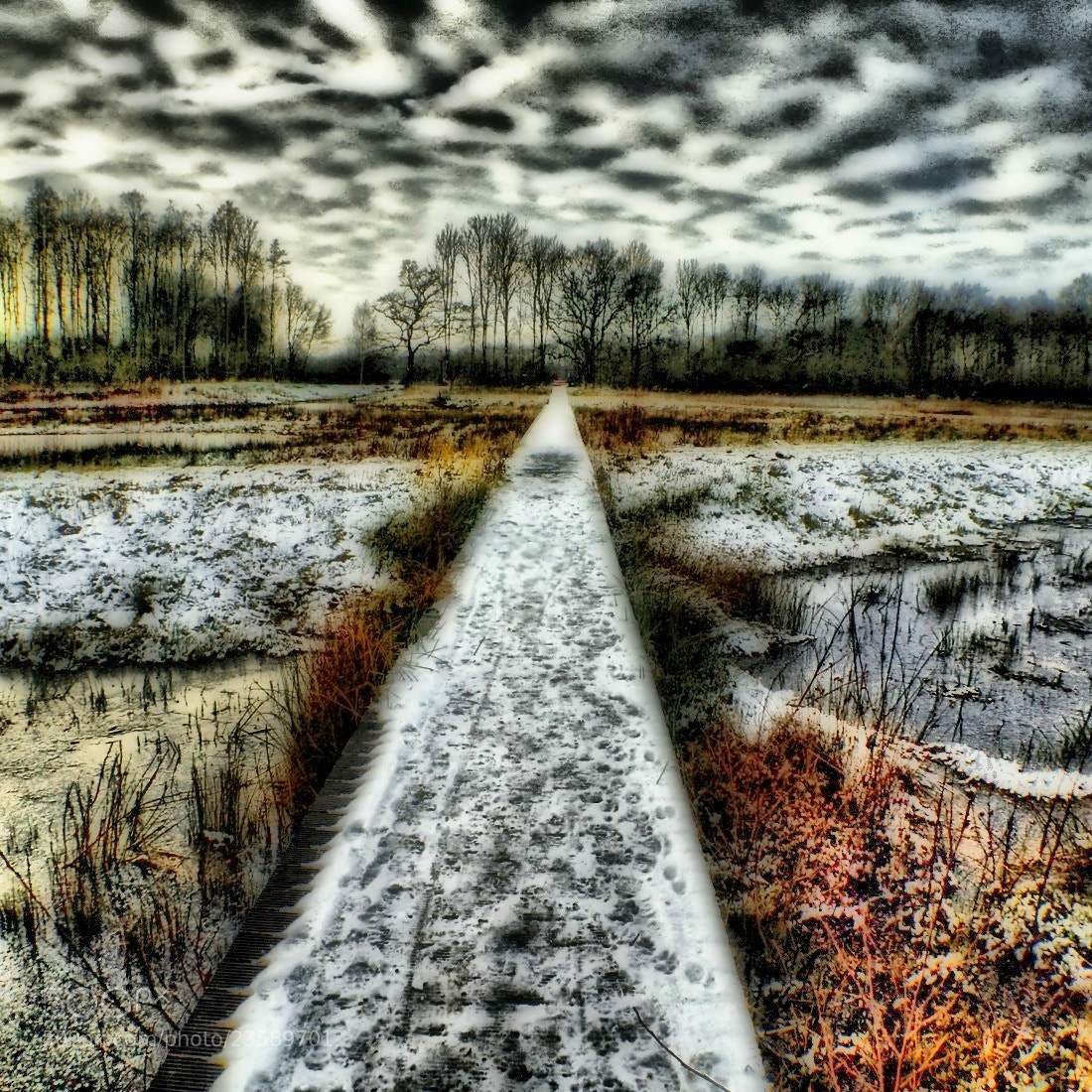 Photograph Path by Roderik van Loef on 500px