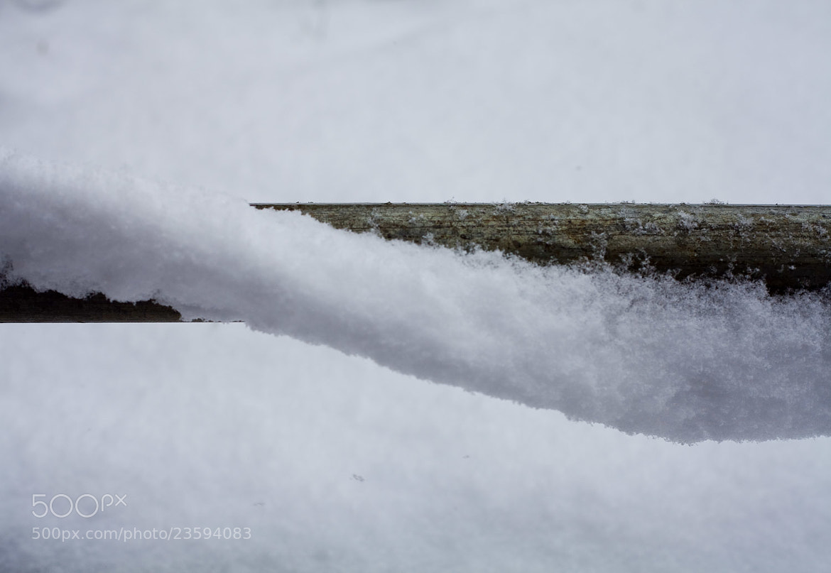 Photograph Snow Twist by Christopher Hawkins on 500px