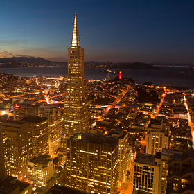 Transamerica tower in downtown San Francisco, looking North towards North Beach district and Coit tower.