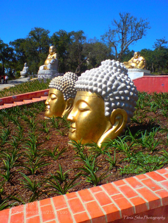Photograph Buda Éden by Tânia S Silva on 500px