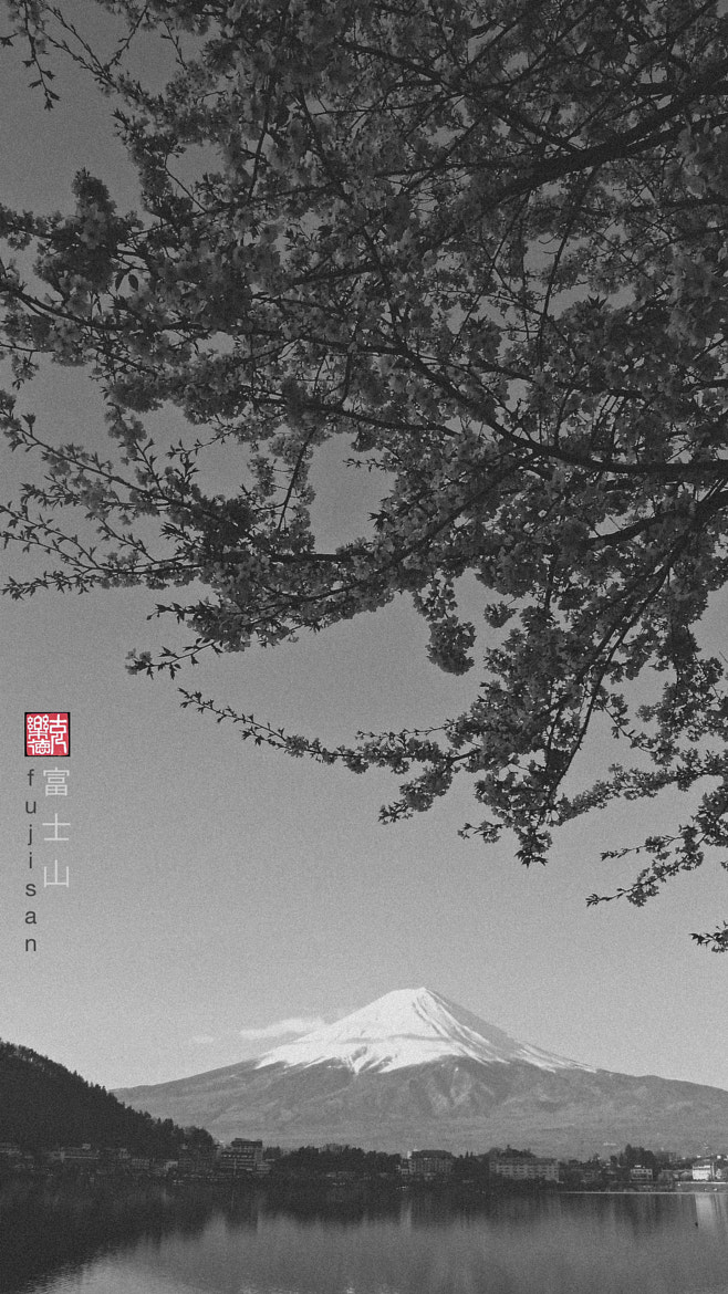 Photograph Mont Fuji by クロード·アラン  on 500px