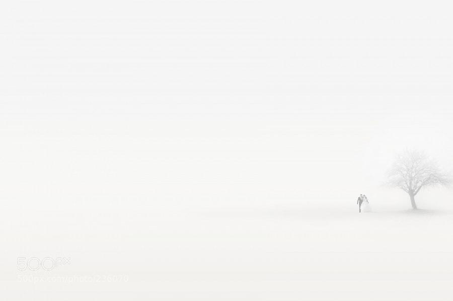 Photograph snowstorm by Kogtev Oleg on 500px