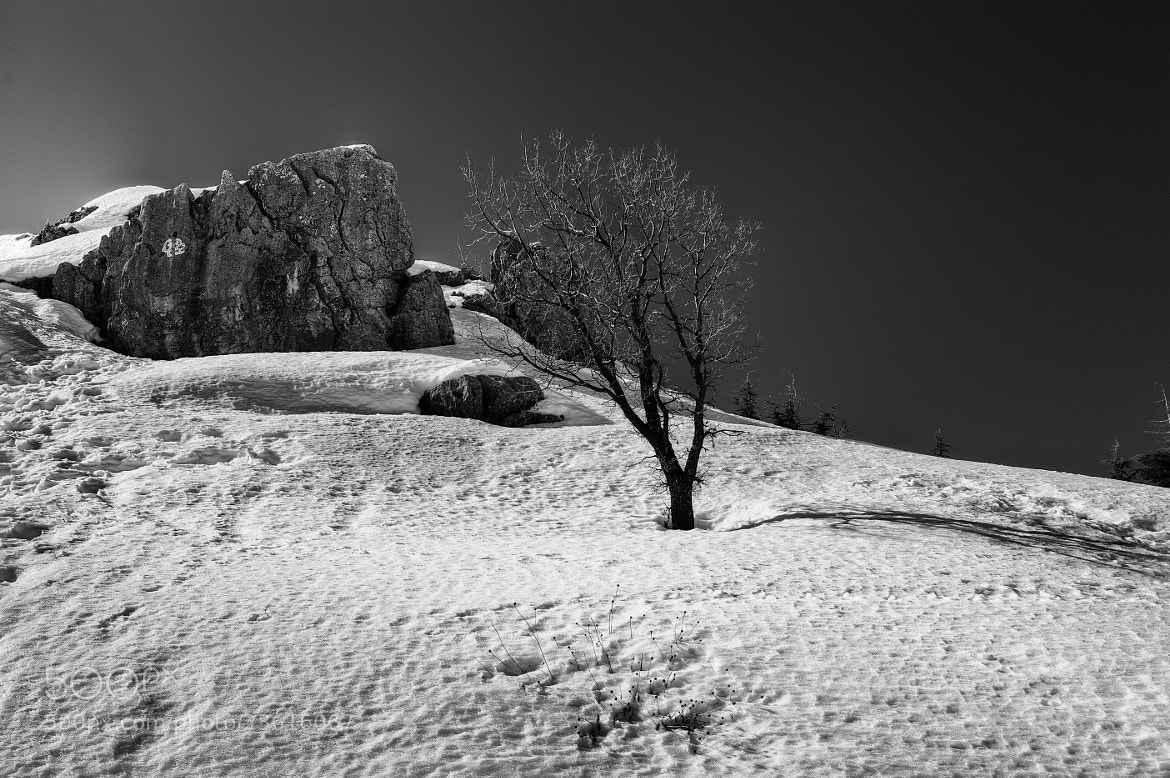 Photograph The Snowscape Series - I by Asi Yacobovitch on 500px