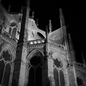 Catedral de León | Lights and shadows