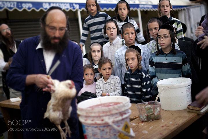 Photograph Kaparot Ritual by Dima Vazinovich on 500px
