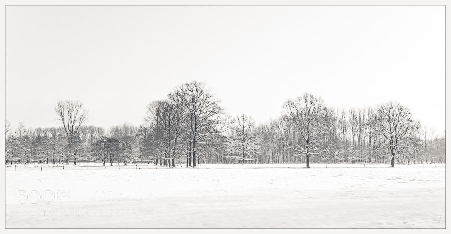 Photograph snow landscape by marleen aerts on 500px
