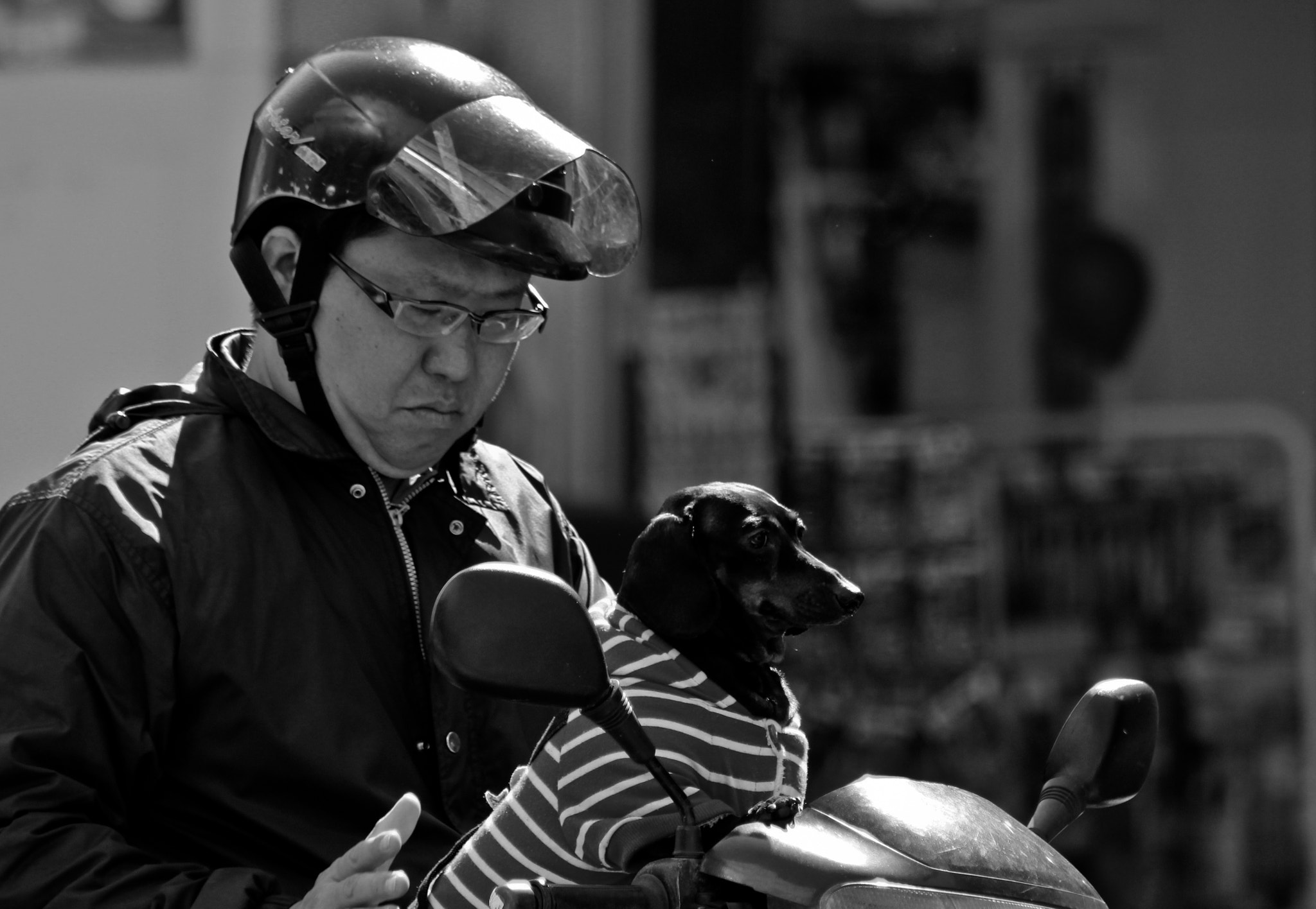 Photograph Man's Best Friend by KimJ Trebble on 500px