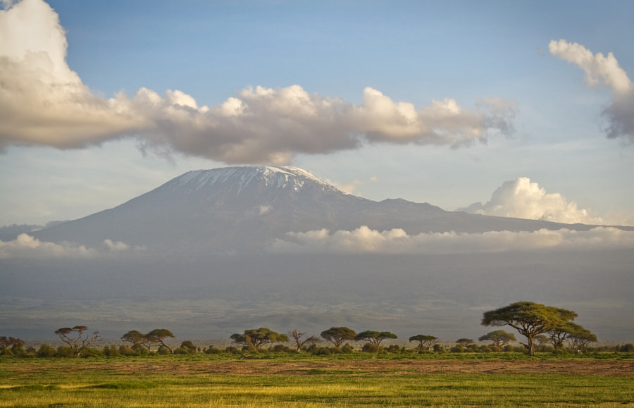 Kilimanjaro by Oleg Domalega on 500px.com