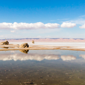 Reflection an saltlake in Chott el Jerid