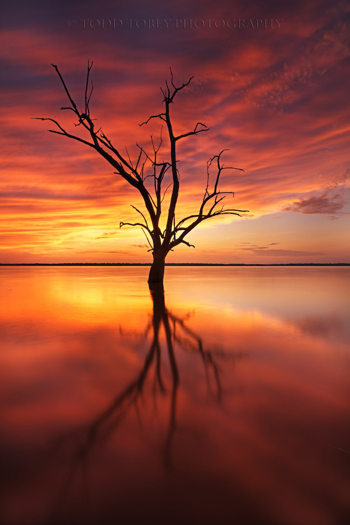 Photograph Prelude to a Dream by Todd Tobey on 500px