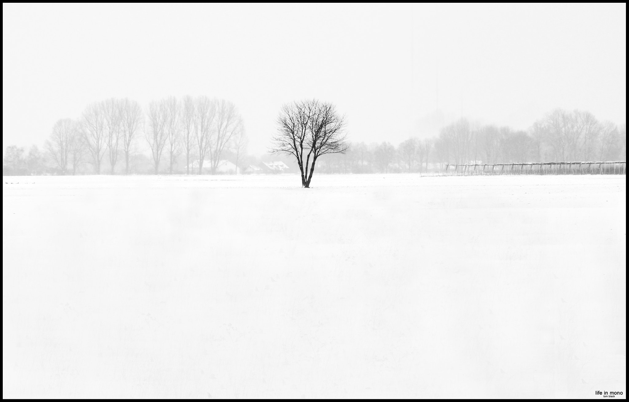 Photograph ... lost & alone ... by Tom Ba on 500px