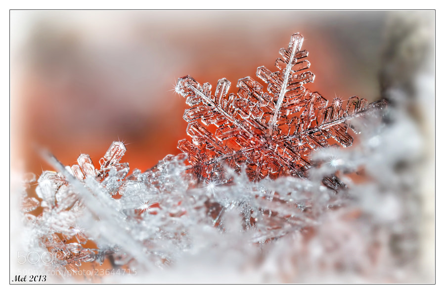 Photograph Snowflake 2 by Jaroslava Melicharová on 500px