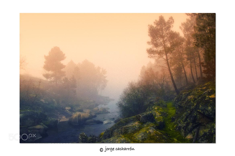 Photograph Brumas by Jorge Cacharrón on 500px