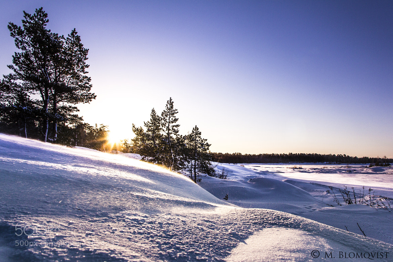 Photograph Sunstorm by Magnus Blomqvist on 500px