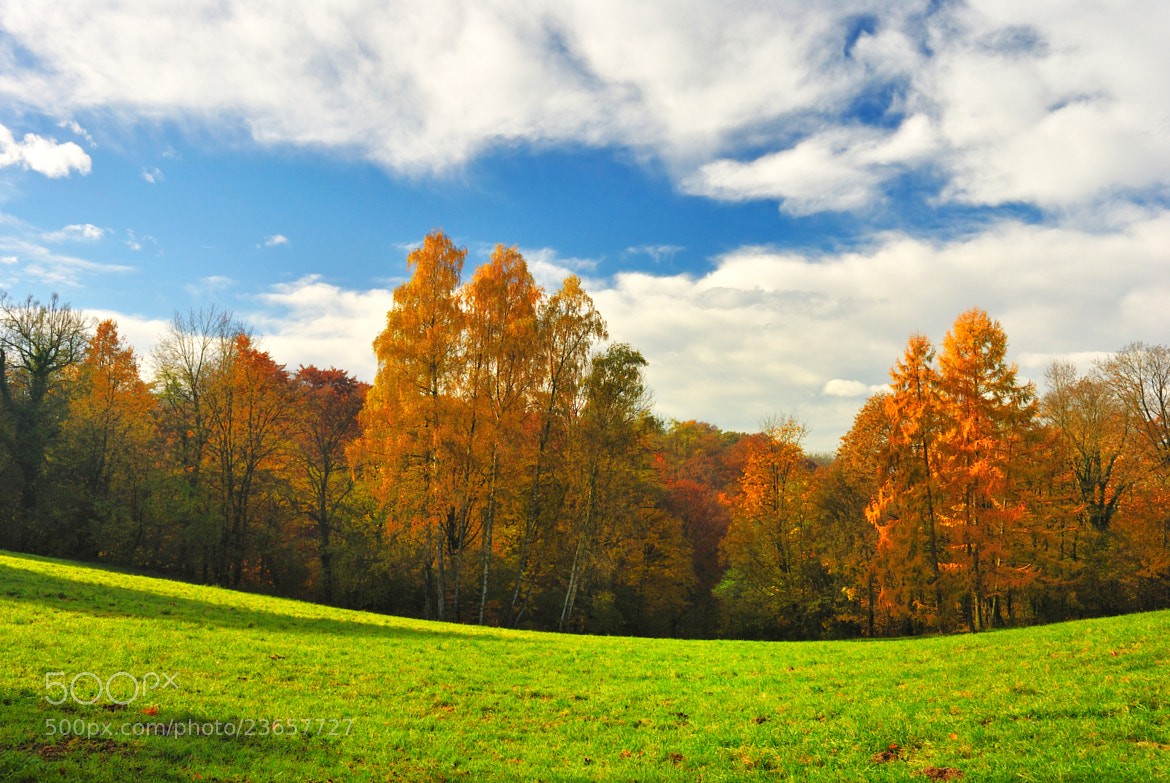 Photograph autumn in hill by lerchhartmut on 500px
