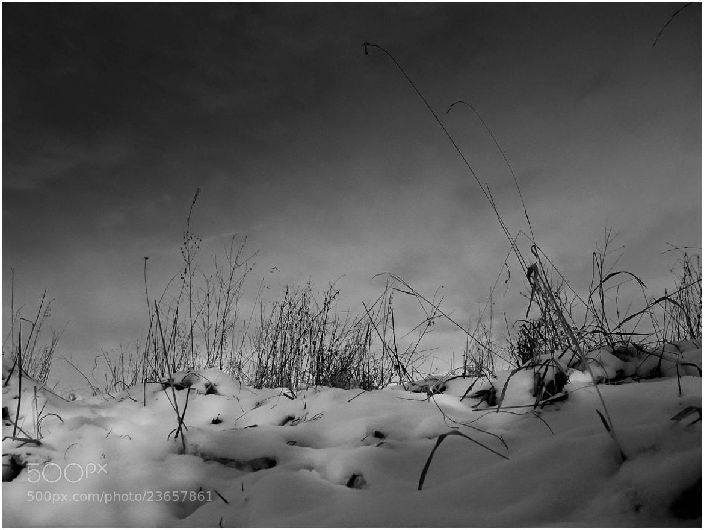 Photograph Snow by Ulrich Fleischer on 500px