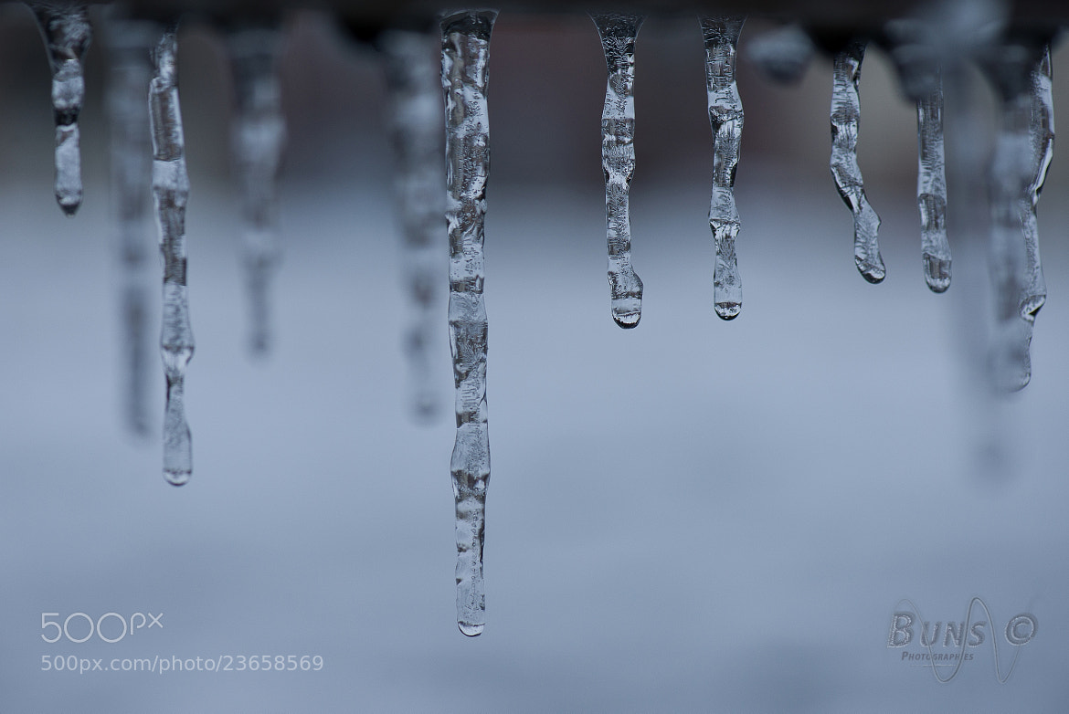 Photograph Frozen by Lucas B. on 500px