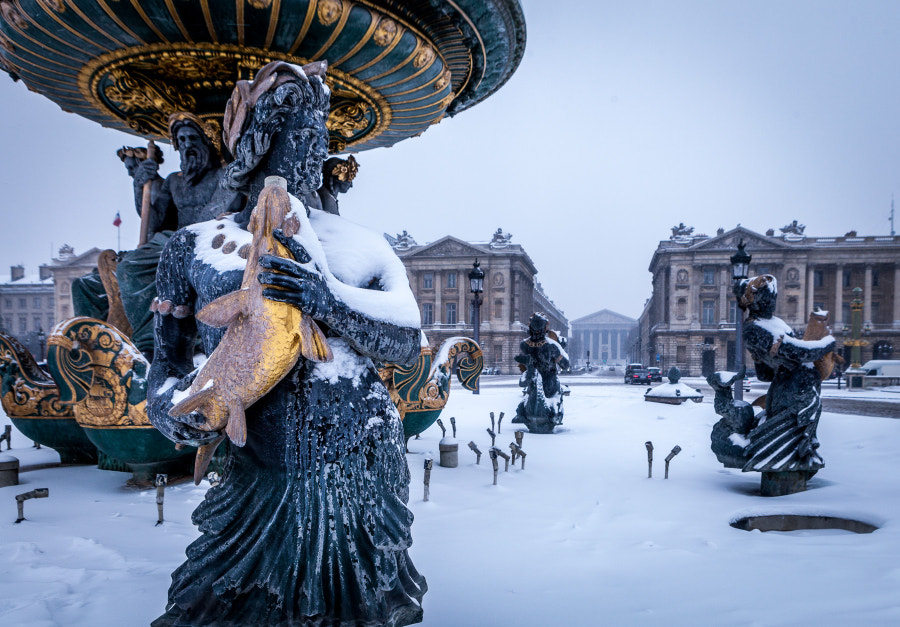 Concorde Plaza Snow 2