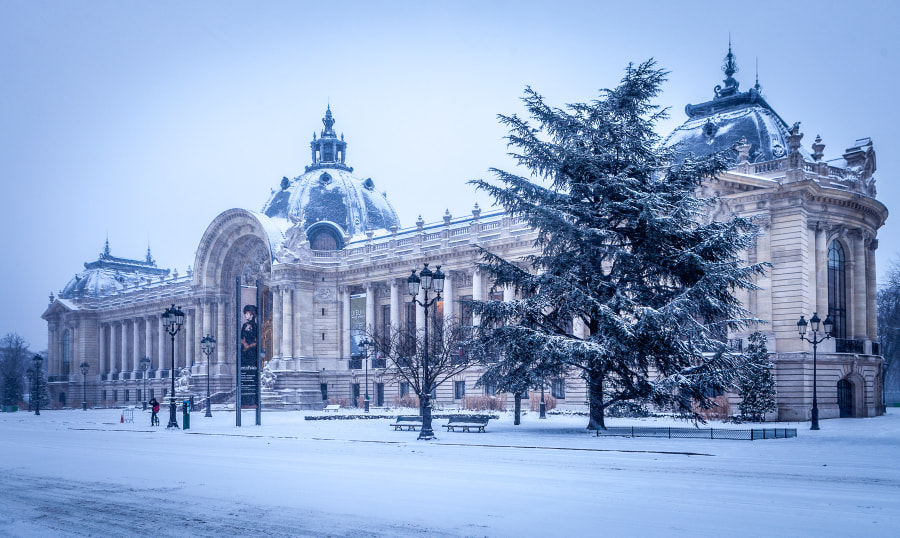 Petit Palais snow 2013 III