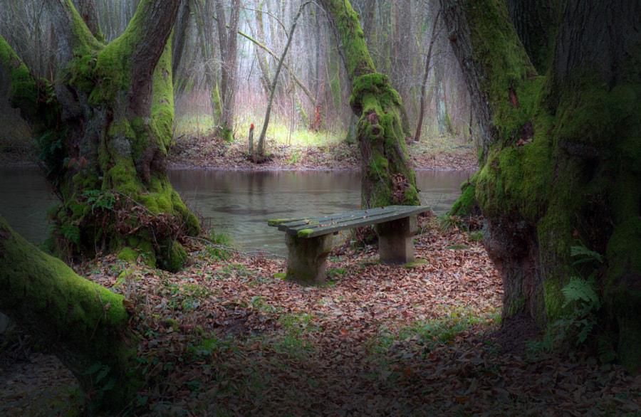 Bench by Mevludin Sejmenovic on 500px.com