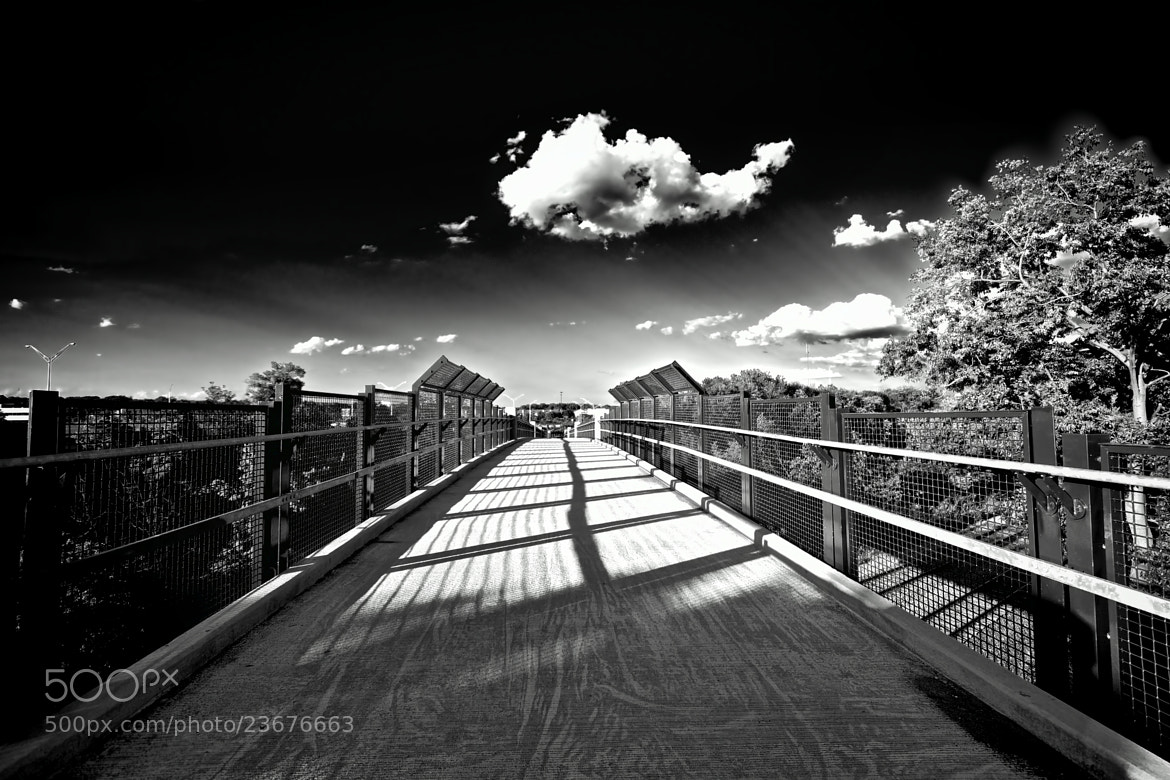 Photograph Footbridge by Berkehaus  on 500px