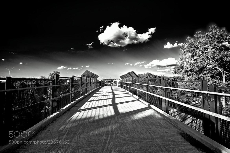 Photograph Footbridge by Berkehaus  on 500px