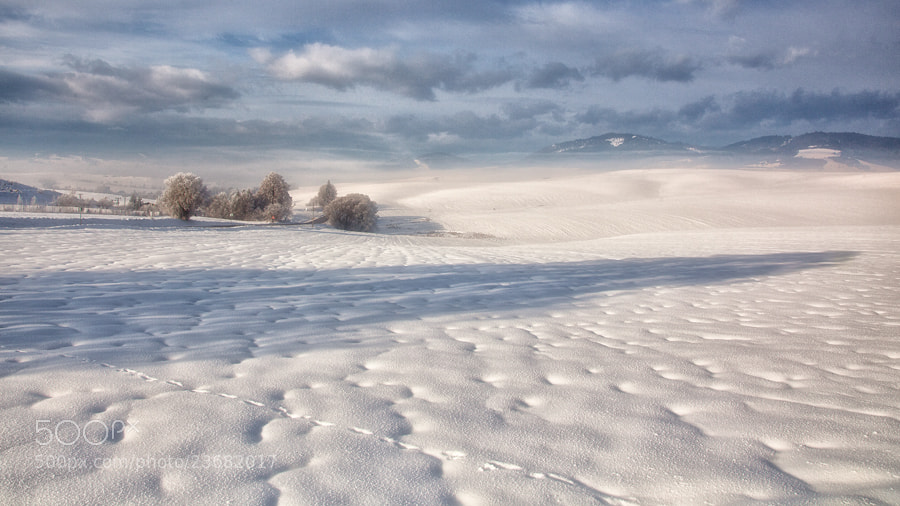 Photograph Winter Mood by Andrea Jancova on 500px